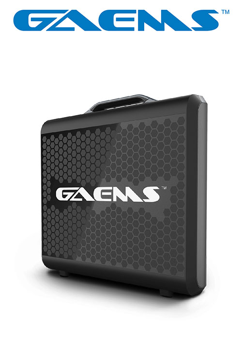 G170 Sentinel Performance Gaming Monitor Full HD 1080P (GAEMS)